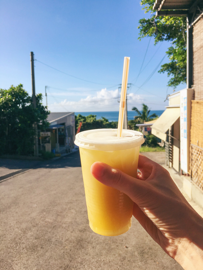 fresh juice in ishigaki yonehara palm grove yaeyama yashi